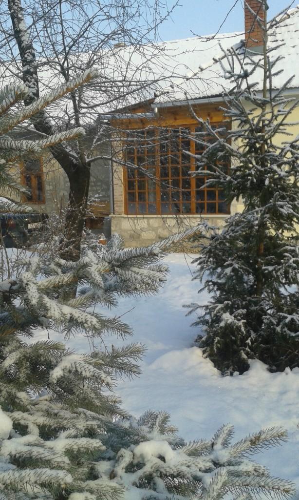 2016 01 21 Bénye ház fenyőkkel 1